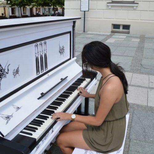 Muzyczny projekt kaliszan – Znajdź mnie, zagraj na mnie