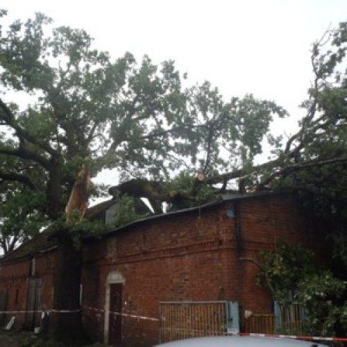 Września – zniszczenia po burzy