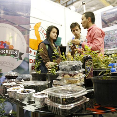 Urząd Marszałkowski – ostatnie dni naboru na targi Inteligentne specjalizacje w Indiach, Chinach, Kolumbii i na Ukrainie
