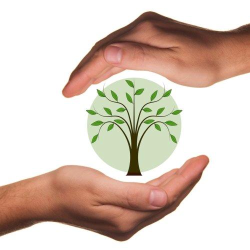 Kalisz – dofinansowania na proekologiczne systemy ogrzewania