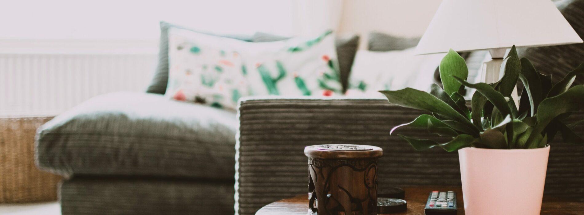 Jak wybrać osuszacz powietrza do domu?